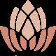 logo bicolor light